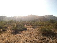 Desert Landscape Preview